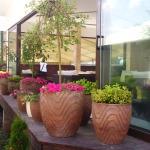Декоративни саксии и цветя за терасата