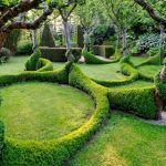Дървета и храсти