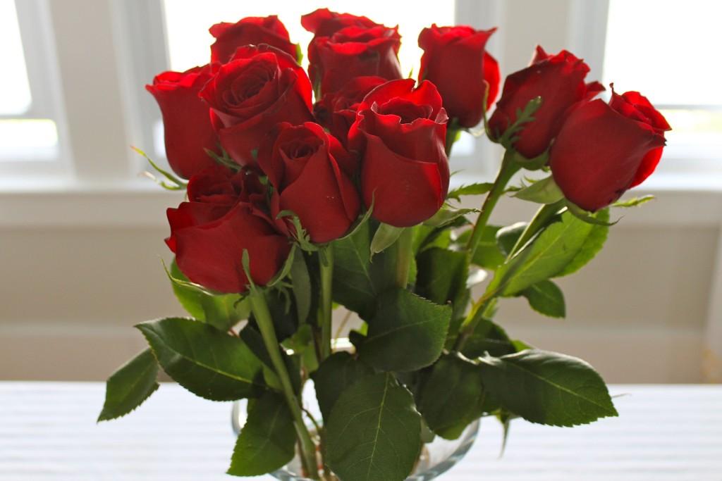 червена роза - любов