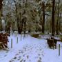 Park Vrana – Парк Врана (24)