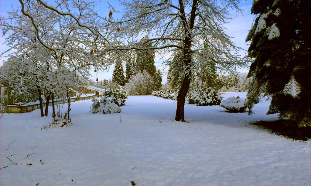 Park Vrana - Парк Врана (9)