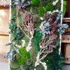 Скандинавски мъхове и зелени стени – Reindeer moss (50)